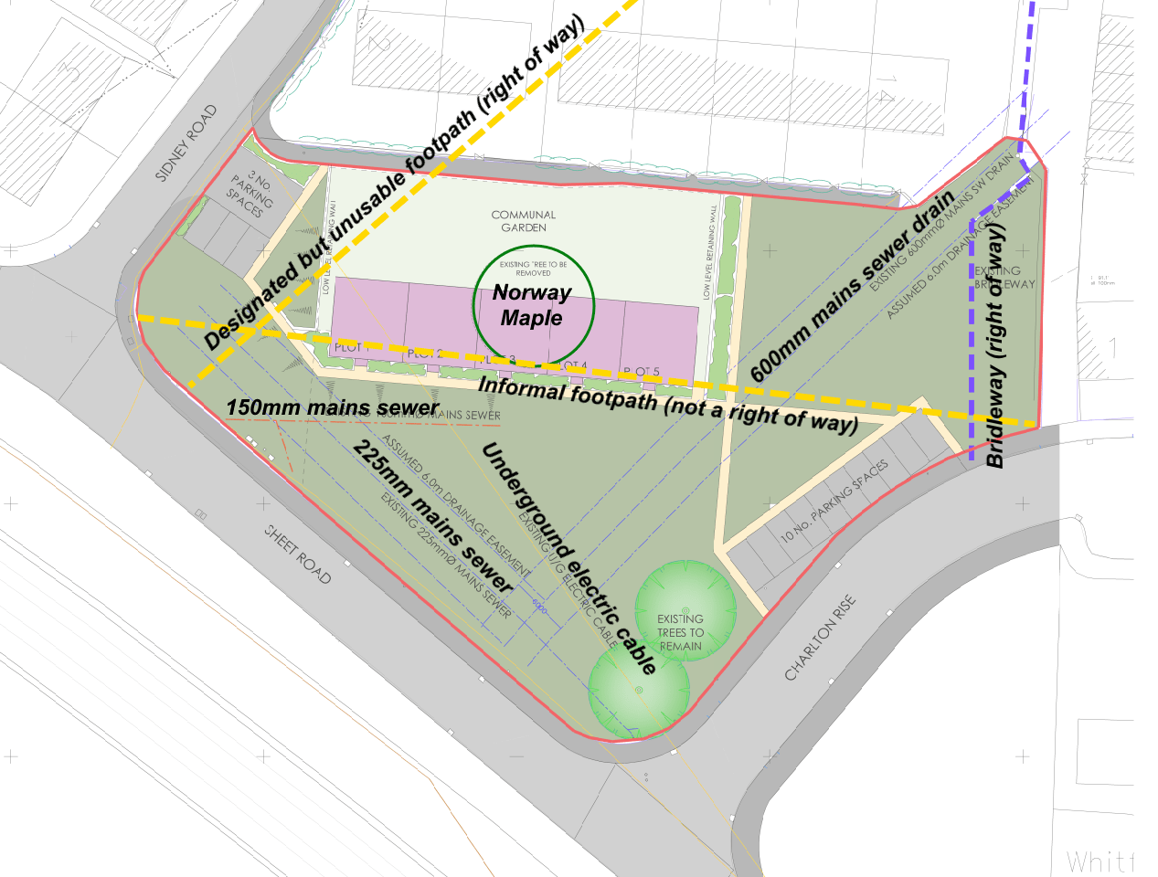 New plans for Sidney Road bungalows – the Norway Maple still gets the chop