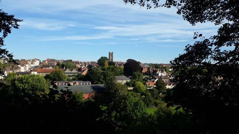 We are denuding Ludlow of trees – we need to act to limit damage to the environment and biodiversity