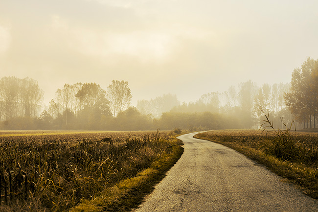 Photo: Morning Haze, courtesy SplitShare.com