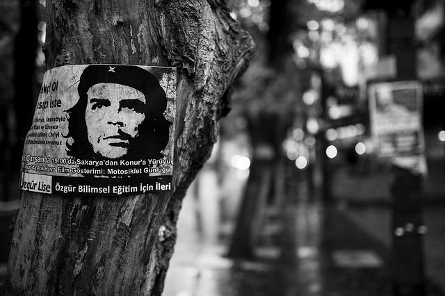 Che Guevara Tree Poster Revolution