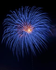 Fireworks blossom