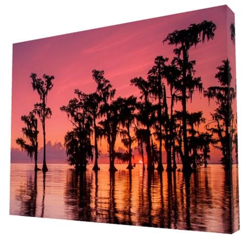 Louisiana swamp sunrise photography