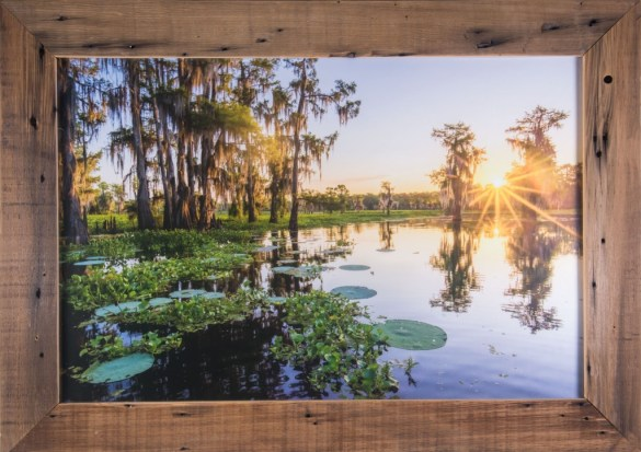 Atchafalaya Basin sunrise photo for sale