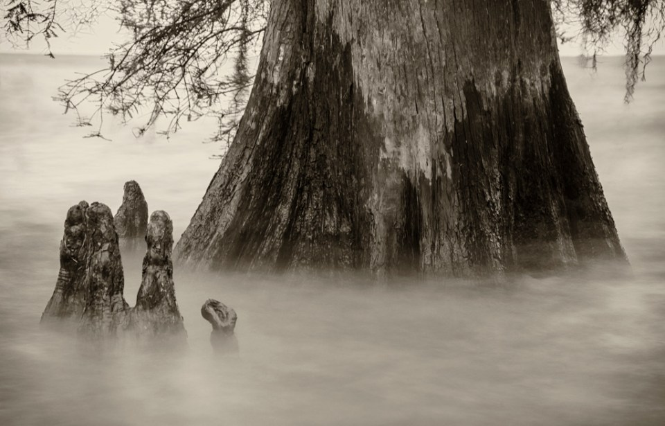 Lake Maurepas photography