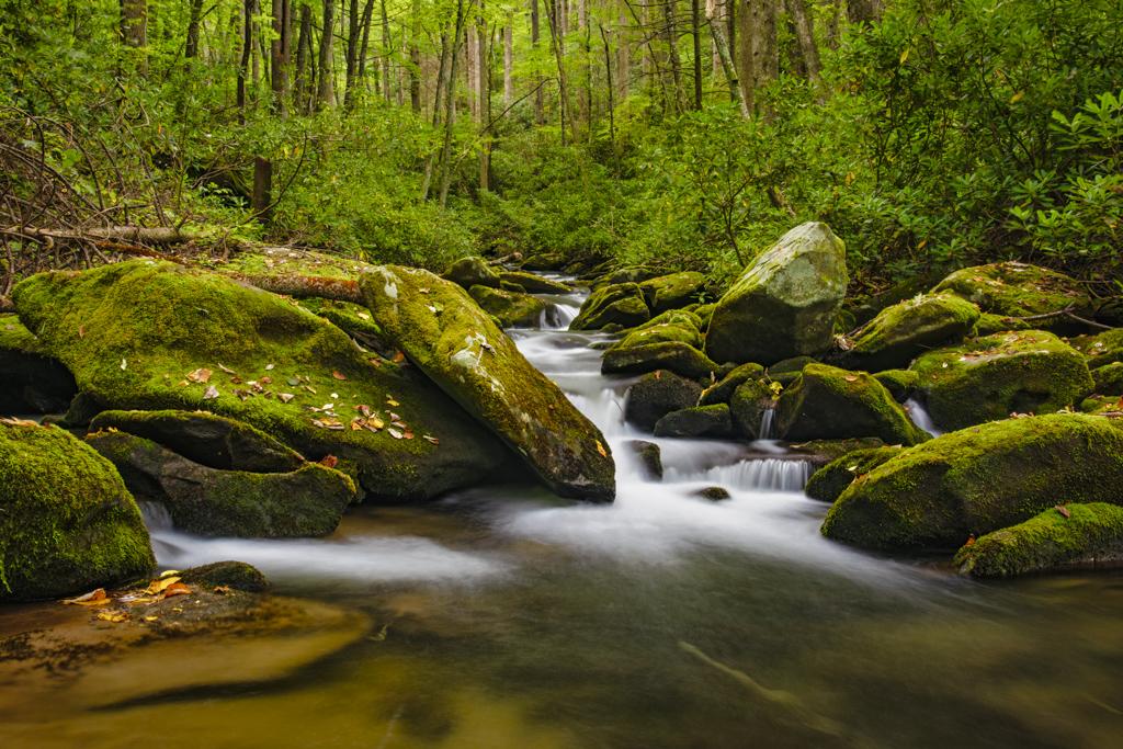 Smoky Mountains waterfall stream