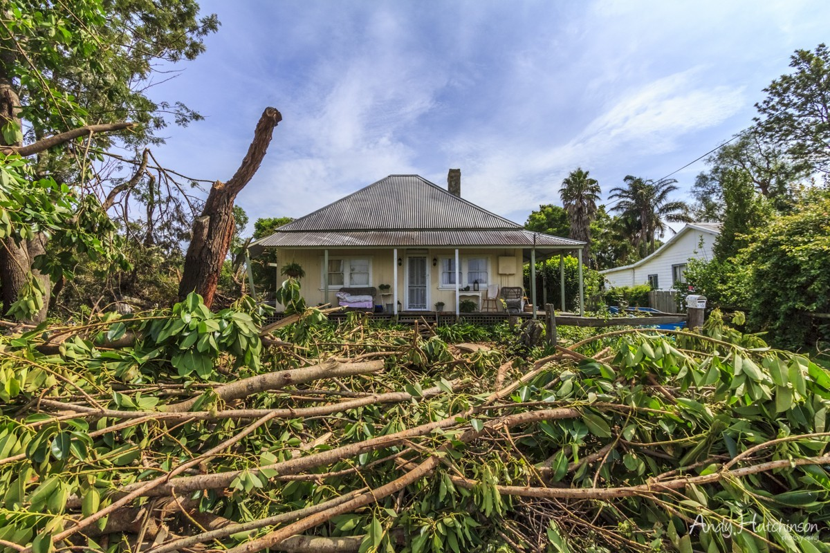 Many houses were damaged in Terrara, some lost roofs, some whole portions of the house. This home owner woke up to a scene of devestation in the front garden and the rear back of the house badly damaged by a falling tree.