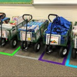 Carts in Parking Spaces