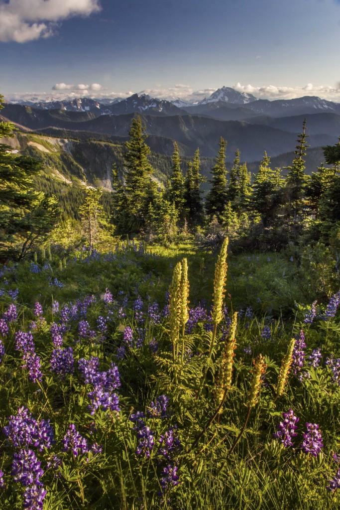 Jack Mountain from Lakeview Ridge