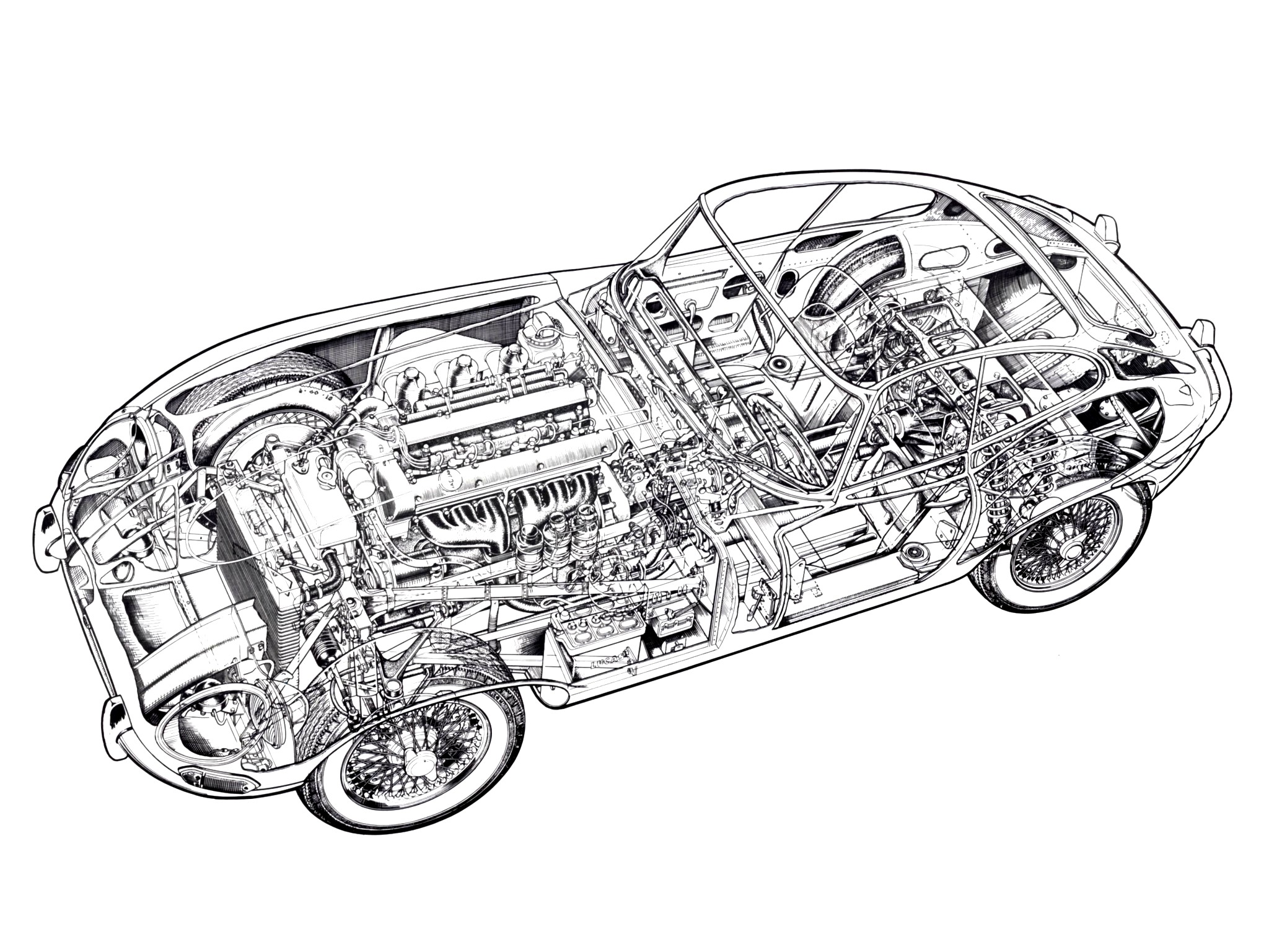 Jaguar Cutaways