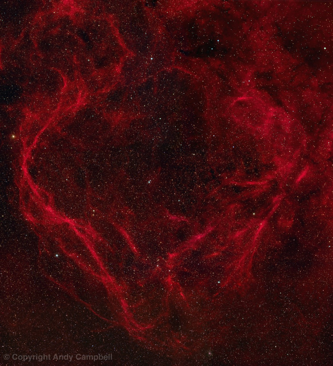supernova remnant RCW114 in Ara narrowband image