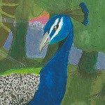 Peafowl in the Forest - James Wellwood