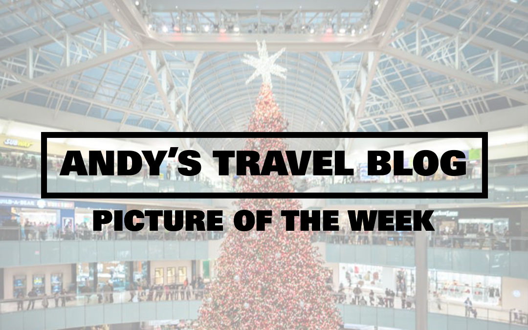 Picture of the Week: Galleria Dallas Christmas Tree