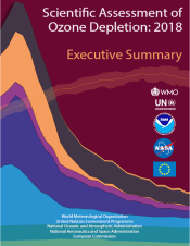 Ozone assessment report