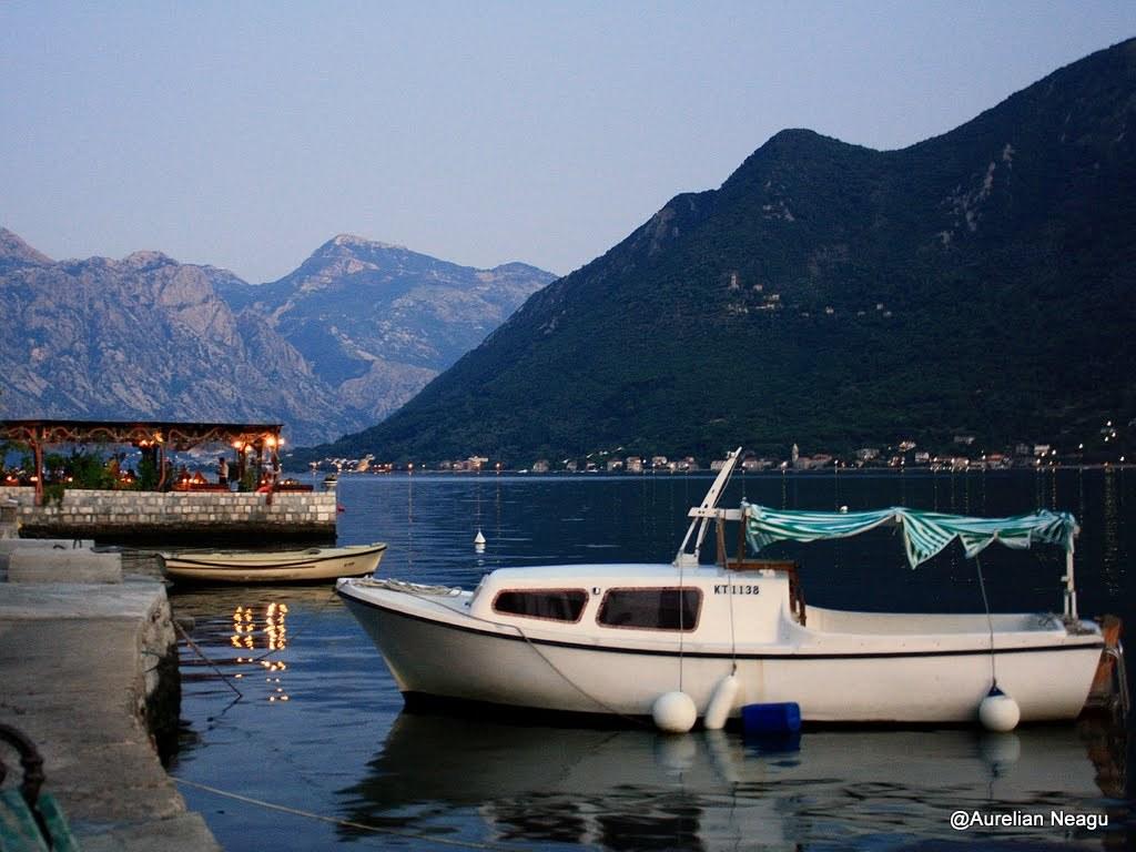 Montenegro 817
