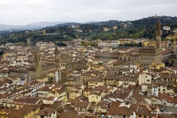 Florenta_Giotto_6