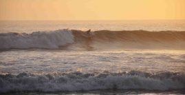 A surfers' paradise