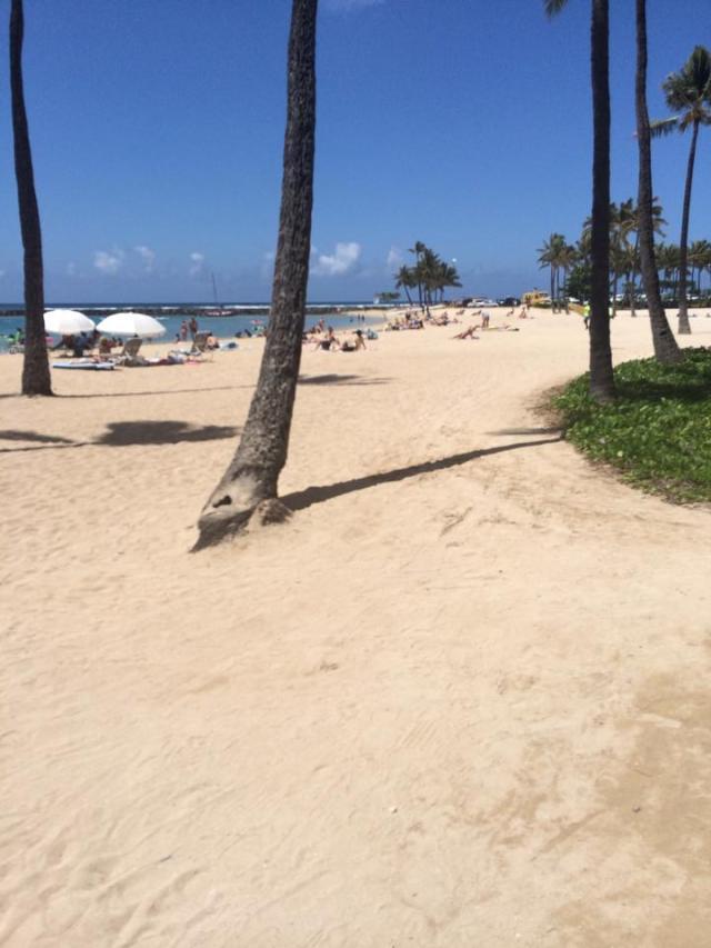 Hawaii 20142