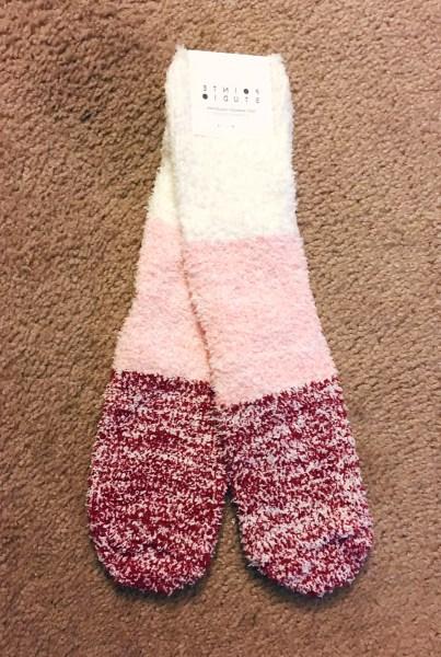 Fabfitfun pointe studio socks