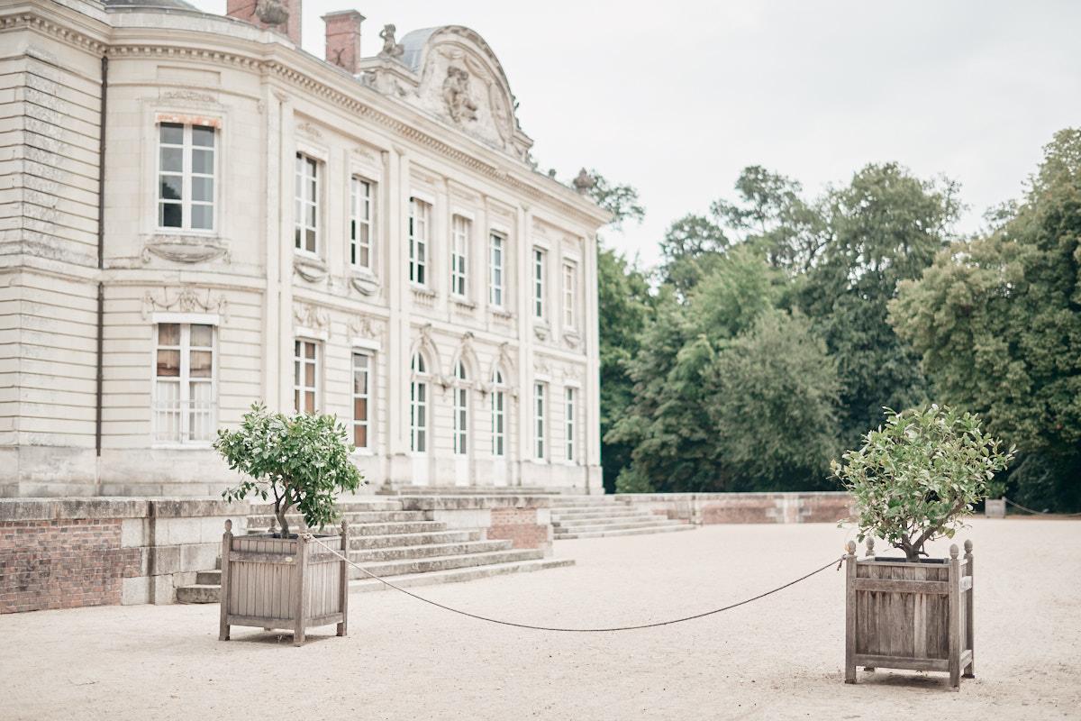 les citronniers de la façade sud du chateau de craon