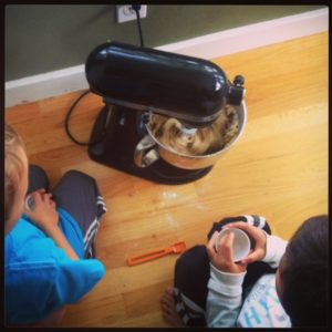 Baking chocolate chip cookies with kids in seattle