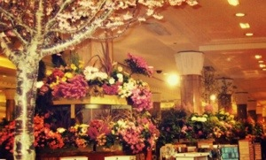 new york macys flower show 2005
