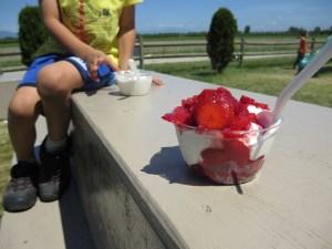 strawberry sundae at Emma Lea farms