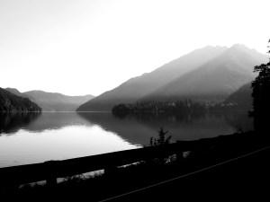 driving through the olympic peninsula