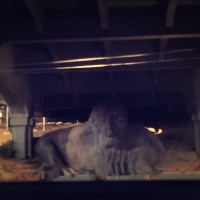 The Fremont Troll and where we eat nearby (Fremont, Seattle)