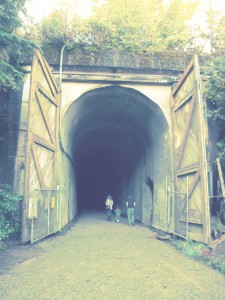 Two mile Snoqualmie tunnel on the Iron Horse Trail that you can bike through bring flashlights!