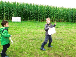 off the corn maze