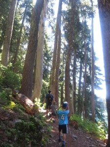 hiking in the pacific northwest with kids
