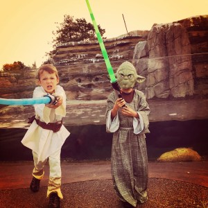 these costumes did not come with the light sabers but it was fun to wear them at boo at the zoo