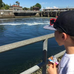 Ballard Locks with kids