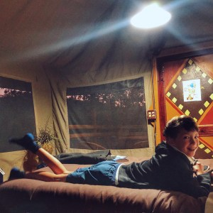 Glamping at Safari West in Santa Rosa with a family of 4-inside a tent