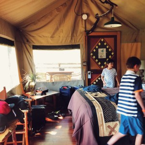 Glamping at Safari West and organizing our tent with our kids before our Safari Tour