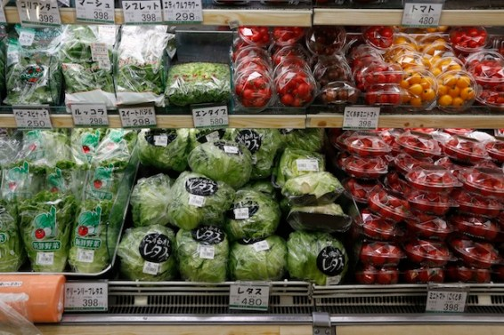 http://blogs.spectator.co.uk/2015/10/how-hard-can-it-be-to-remove-all-plastic-from-your-supermarket-shop-you-might-be-surprised/