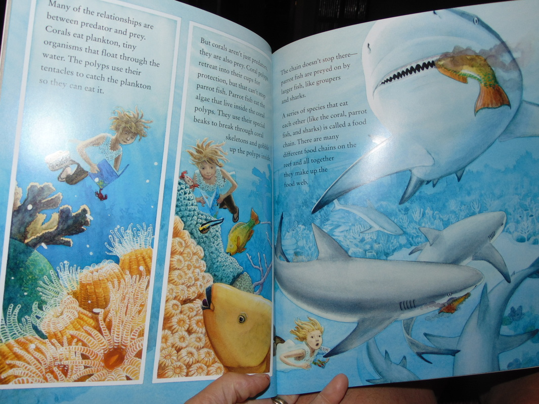Review Coral Reefs