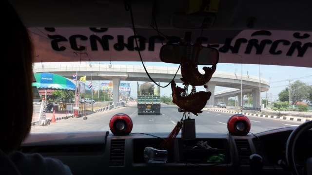 Elefant pa motorvejen