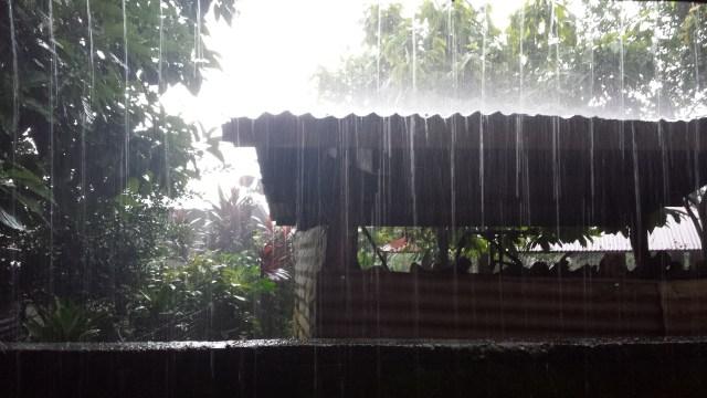 Tag i regnvejr