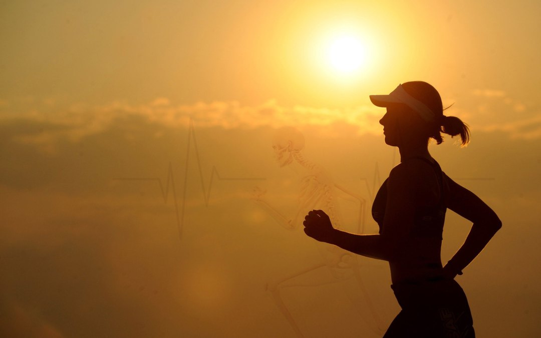 Saúde dos ossos e cardiovascular
