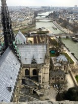A view of the Seine from Notre Dame.