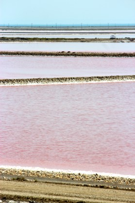 Workers hand-harvest the flower-like crystals of sea salt floating atop the brackish water before they coagulate into huge crystals and sink. The flavor is delicate and minerally, best for applying to food after it has been cooked.
