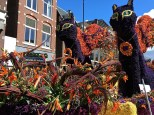 """The """"Purrrfumes of the Past"""" float featured two ladies dressed like Catwoman, who prowled through the crowd while meowing and acting like strays."""
