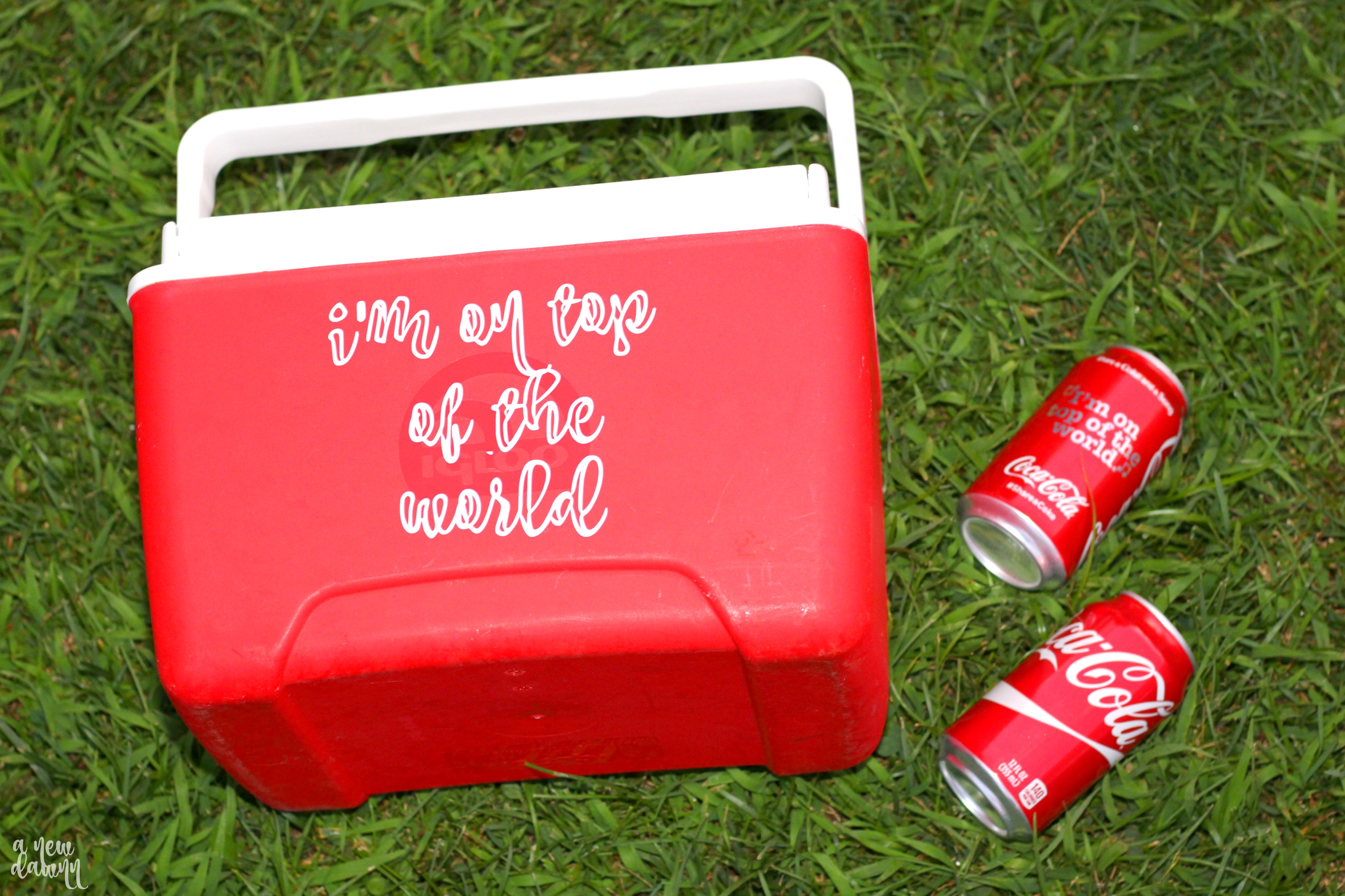 DIY-Personalized-Cooler