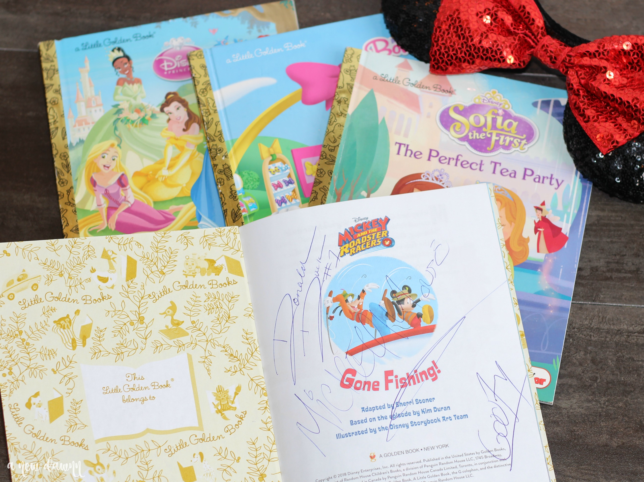 Unique Disney Autograph Book Ideas
