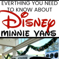 Everything You Need to Know About Disney's Minnie Van Service
