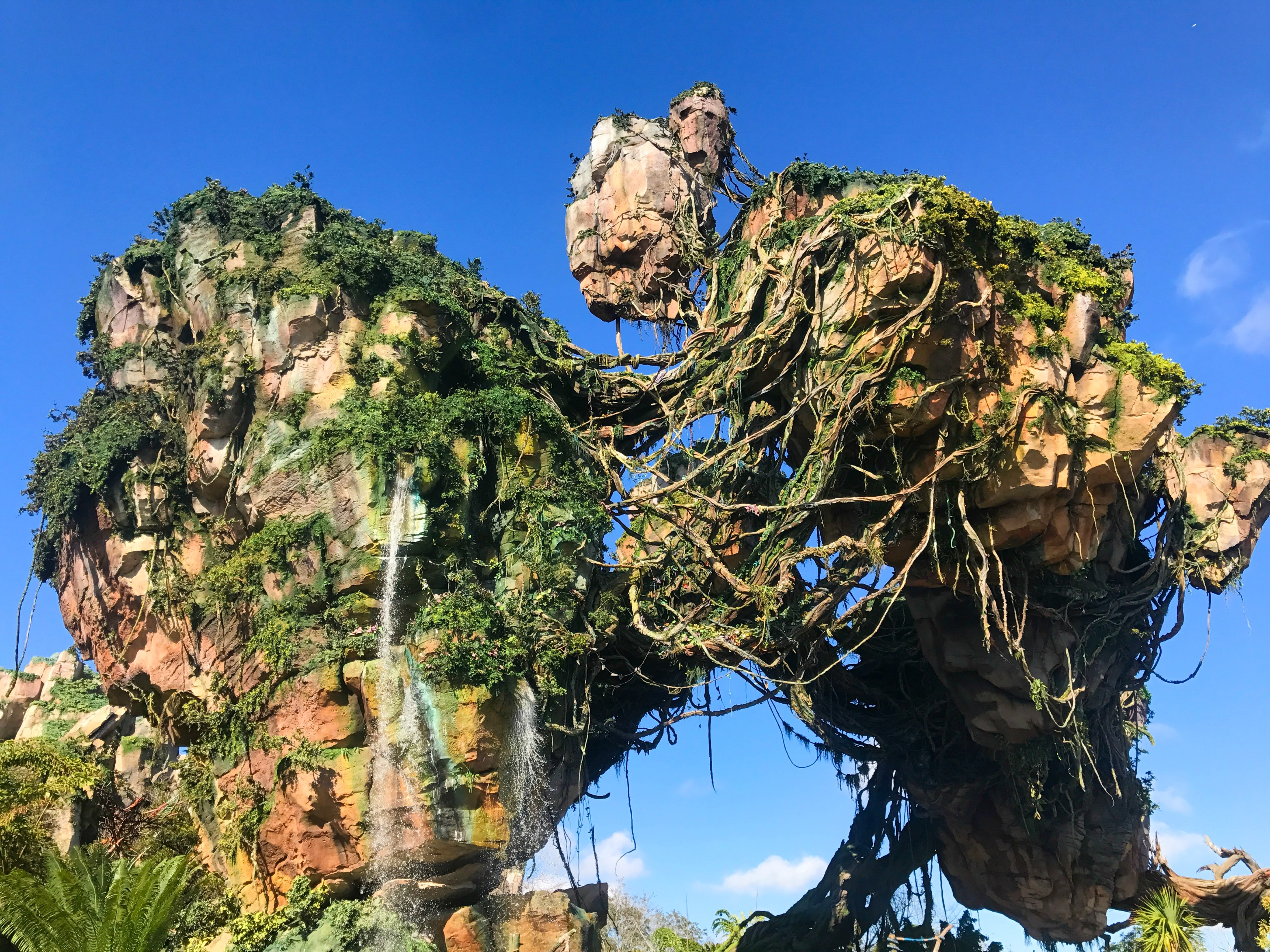 Pandora The World of Avatar - Everything You Need to Know BEFORE You Go