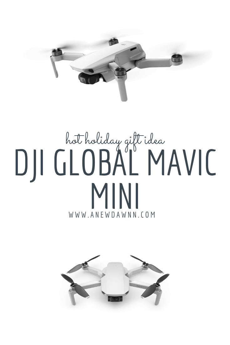 DJI Global Mavic Mini