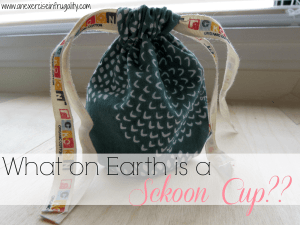 What on Earth is a Sckoon Cup?
