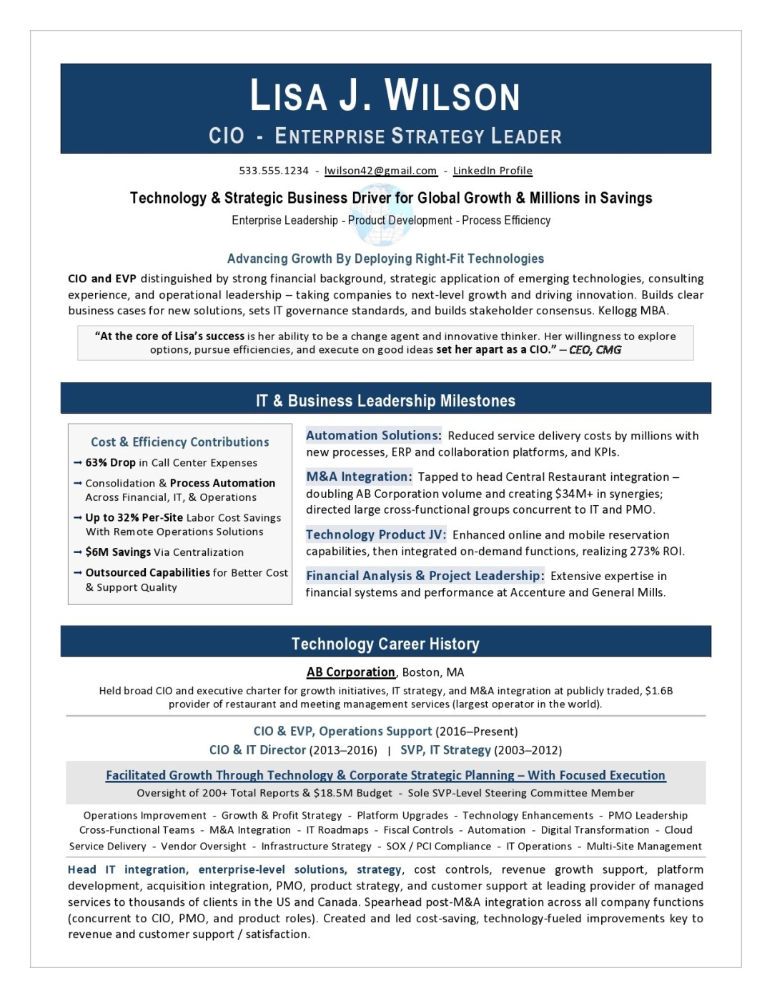 IT Director Resume Sample Page 1